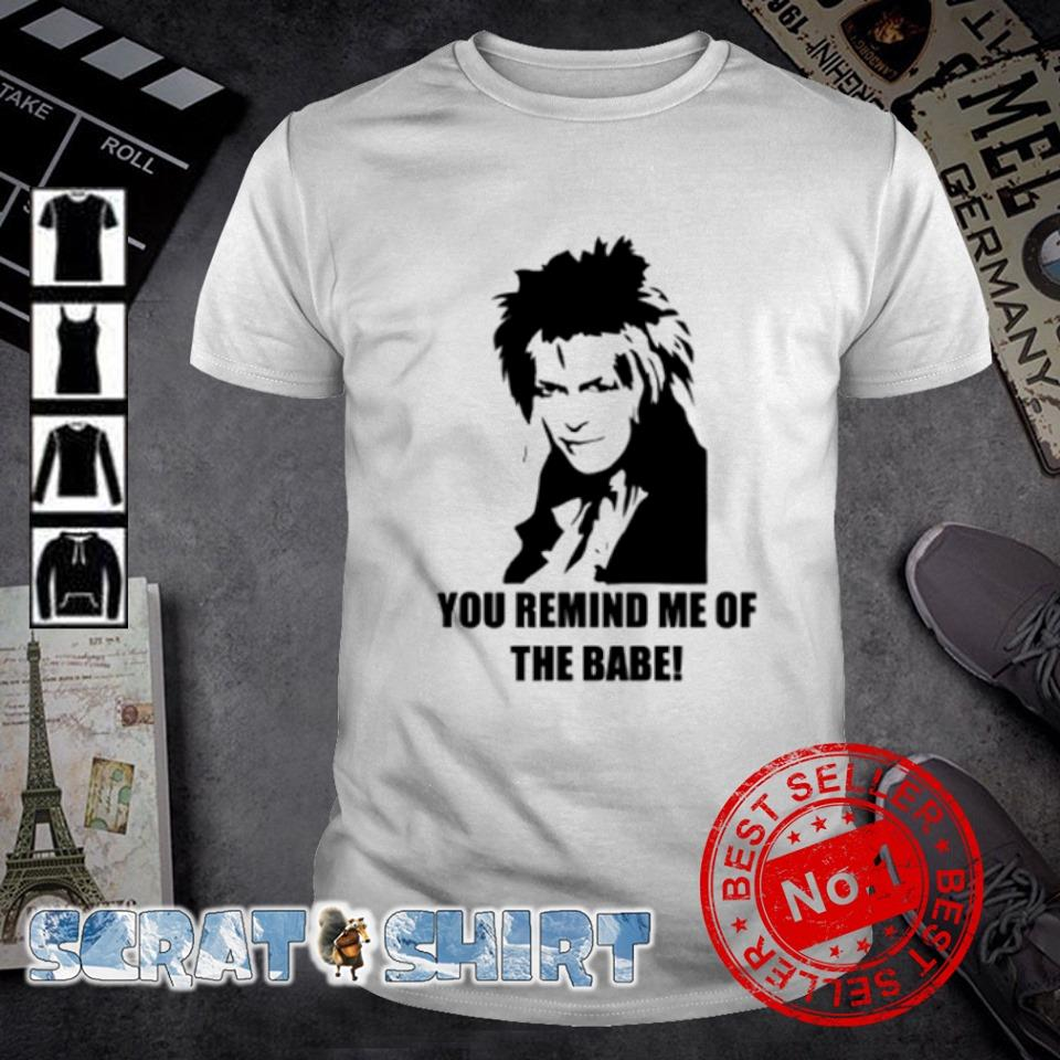 Labyrinth Jareth you remind me of the babe shirt