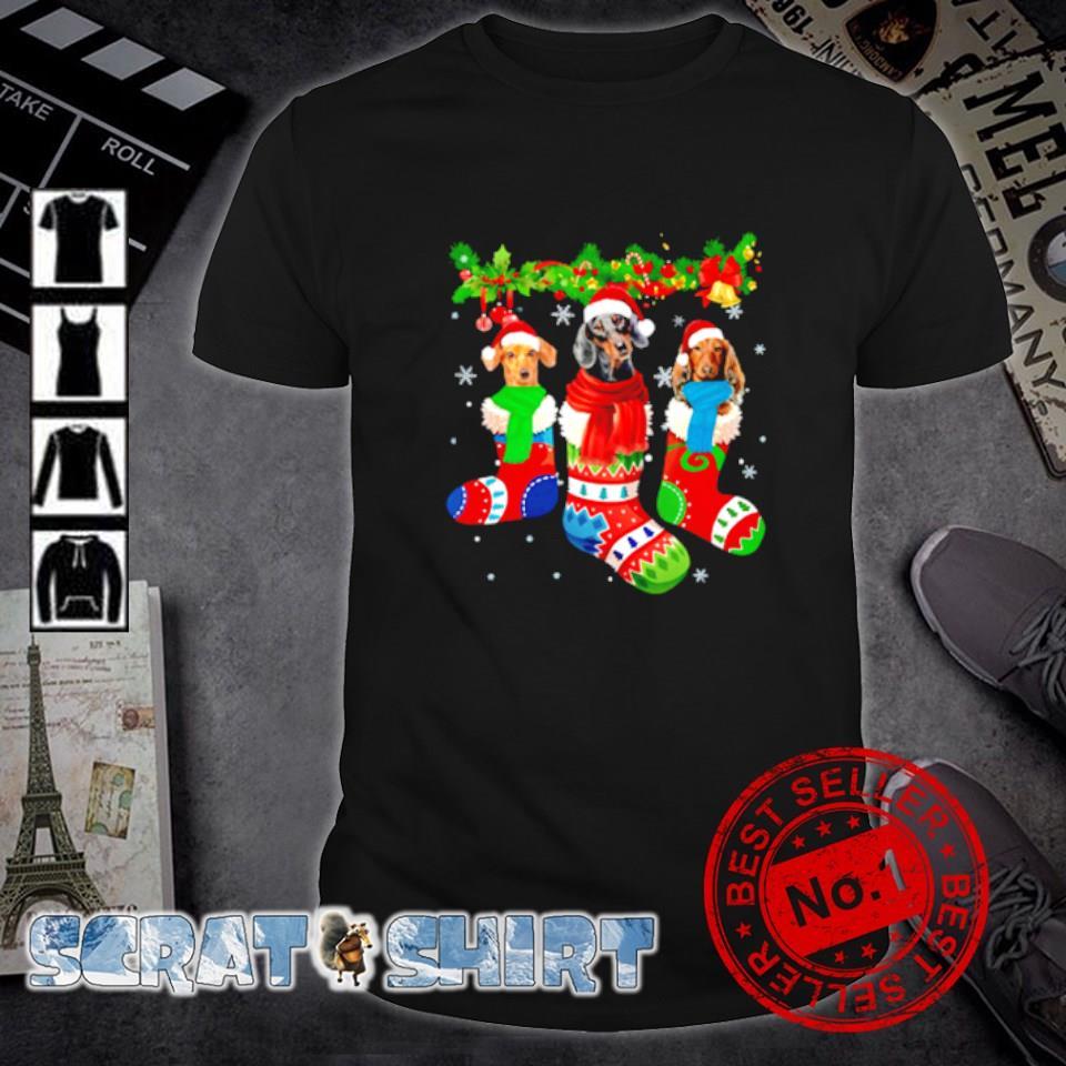 Dachshund in Christmas socks shirt